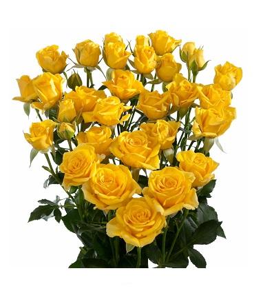 Цветы спрей